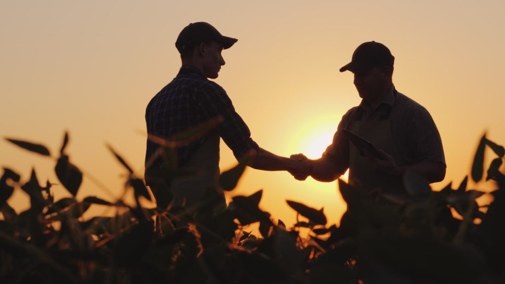 Silhouette of two males discussing business on a field and shaking hands.